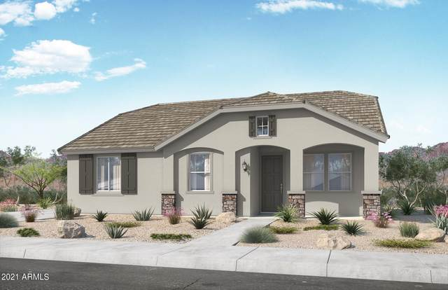 14217 W Bronco Trail, Surprise, AZ 85387 (MLS #6296221) :: Justin Brown | Venture Real Estate and Investment LLC