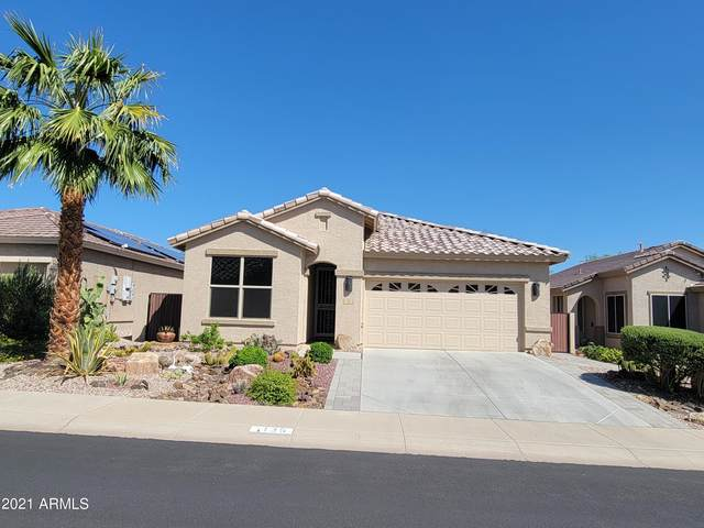 135 S 225TH Avenue, Buckeye, AZ 85326 (MLS #6296246) :: Zolin Group