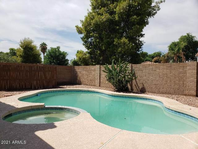 2470 S Apache Drive, Chandler, AZ 85286 (MLS #6296255) :: The Everest Team at eXp Realty