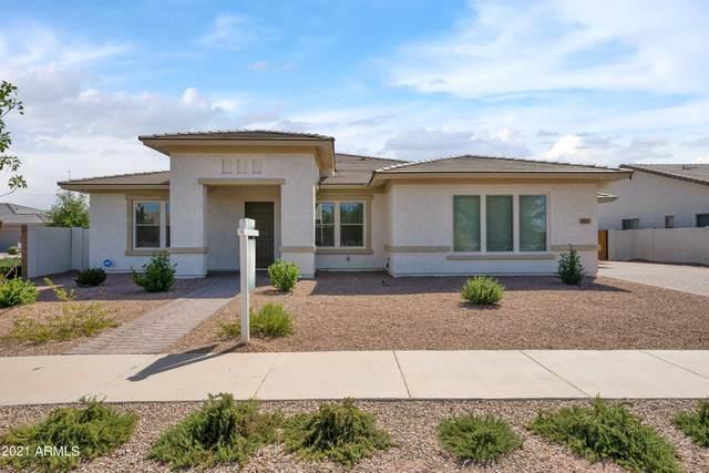 23145 E Stonecrest Drive, Queen Creek, AZ 85142 (MLS #6296257) :: My Home Group