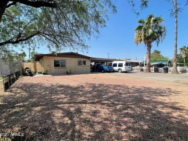 711 E Marilyn Avenue, Mesa, AZ 85204 (MLS #6296264) :: Yost Realty Group at RE/MAX Casa Grande