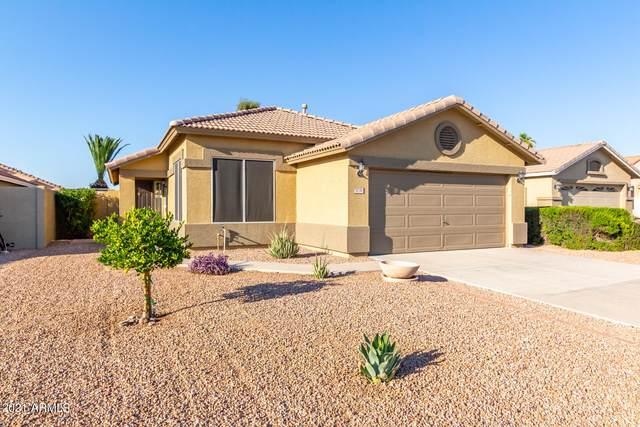 5738 E Harmony Avenue, Mesa, AZ 85206 (MLS #6296275) :: Balboa Realty