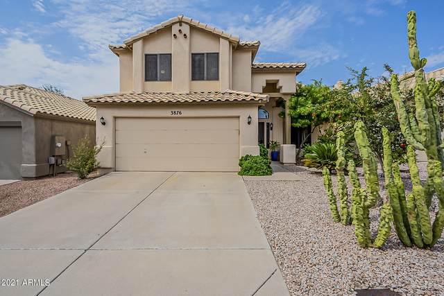 3876 E Mountain Sky Avenue, Phoenix, AZ 85044 (MLS #6296282) :: Yost Realty Group at RE/MAX Casa Grande