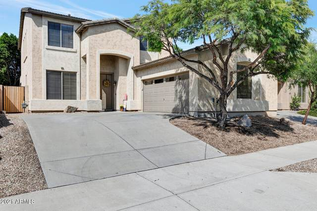 2506 W Florentine Road, Phoenix, AZ 85086 (MLS #6296284) :: The Property Partners at eXp Realty