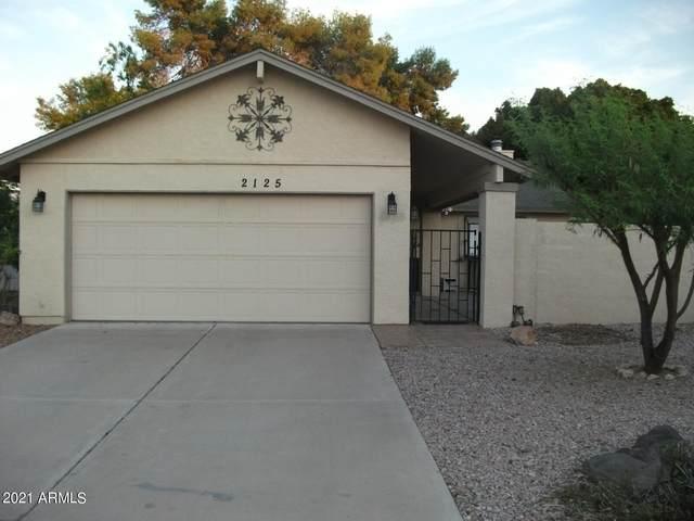 2125 W Jibsail Loop, Mesa, AZ 85202 (MLS #6296314) :: Zolin Group