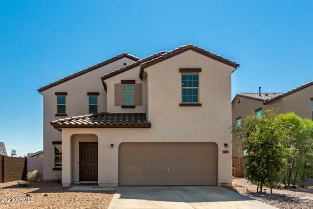 20159 W Woodlands Avenue, Buckeye, AZ 85326 (MLS #6296321) :: Yost Realty Group at RE/MAX Casa Grande