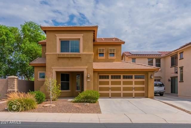 15339 N 145TH Avenue, Surprise, AZ 85379 (MLS #6296338) :: The Riddle Group