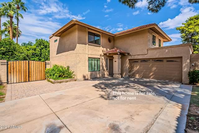 713 N Larkspur Street, Gilbert, AZ 85234 (MLS #6296350) :: The Copa Team | The Maricopa Real Estate Company