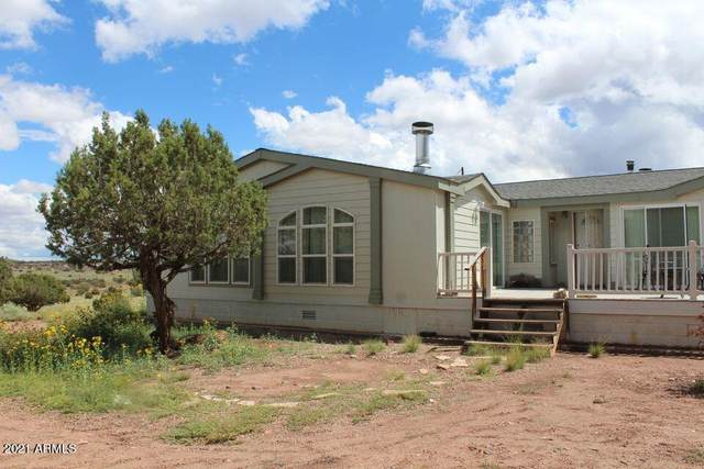 4080 S Black Mesa Valley Road, Snowflake, AZ 85937 (MLS #6296353) :: Elite Home Advisors