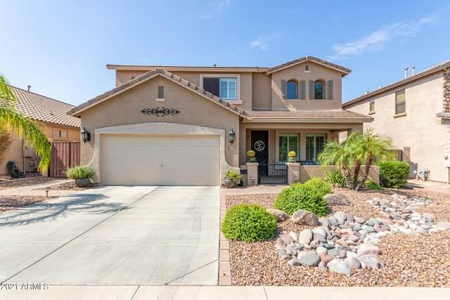 6632 S Cartier Drive, Gilbert, AZ 85298 (MLS #6296360) :: Selling AZ Homes Team