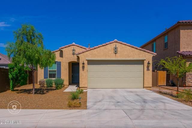 9598 W Robin Lane, Peoria, AZ 85383 (MLS #6296402) :: Selling AZ Homes Team