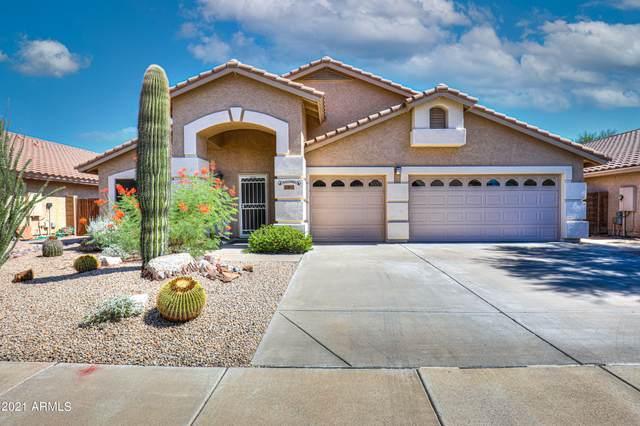 23805 N 21ST Place, Phoenix, AZ 85024 (MLS #6296412) :: Klaus Team Real Estate Solutions