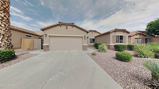 17572 W Crocus Drive, Surprise, AZ 85388 (MLS #6296416) :: Zolin Group