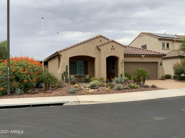 26028 W Wahalla Lane, Buckeye, AZ 85396 (MLS #6296421) :: Yost Realty Group at RE/MAX Casa Grande