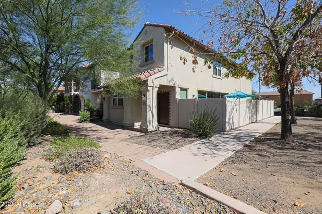 12492 W Hummingbird Terrace, Peoria, AZ 85383 (MLS #6296422) :: Selling AZ Homes Team