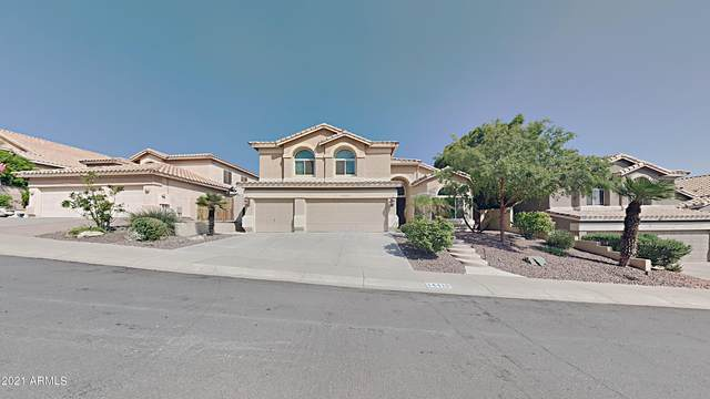 14419 S 8th Street, Phoenix, AZ 85048 (MLS #6296423) :: The Copa Team | The Maricopa Real Estate Company