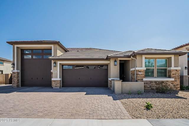 9803 E Harvest Road, Florence, AZ 85132 (MLS #6296427) :: Devor Real Estate Associates