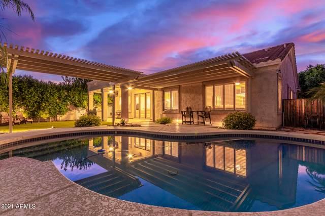6159 W Sequoia Drive, Glendale, AZ 85308 (MLS #6296471) :: The Copa Team | The Maricopa Real Estate Company