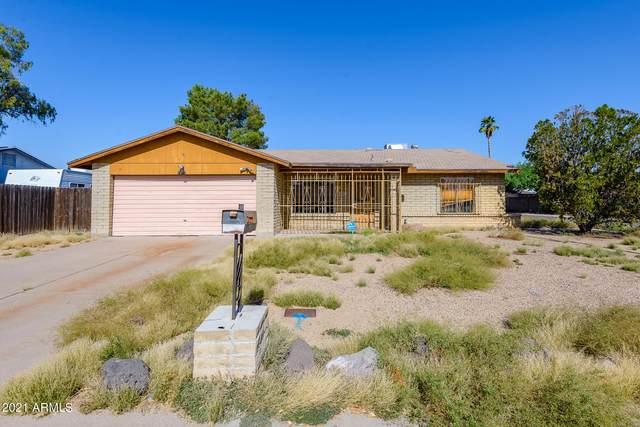 17272 N Paradise Park Drive, Phoenix, AZ 85032 (MLS #6296479) :: The Copa Team | The Maricopa Real Estate Company