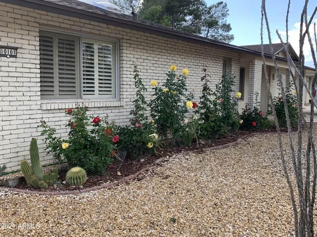 10101 W Concho Circle, Sun City, AZ 85373 (MLS #6296480) :: The Property Partners at eXp Realty