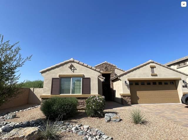 252 E Bartlett Way, Chandler, AZ 85249 (MLS #6296486) :: Selling AZ Homes Team