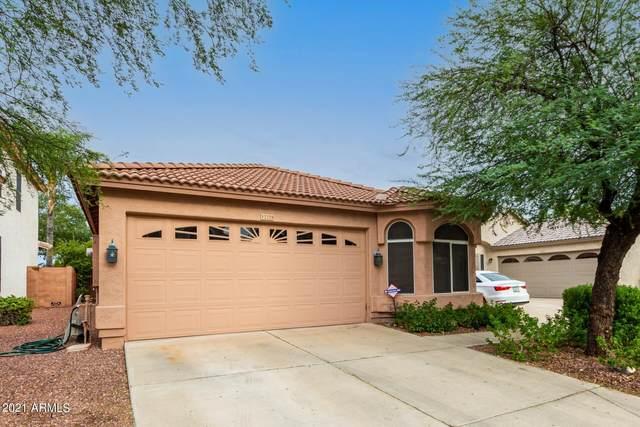 3329 E Tierra Buena Lane, Phoenix, AZ 85032 (MLS #6296488) :: The Riddle Group