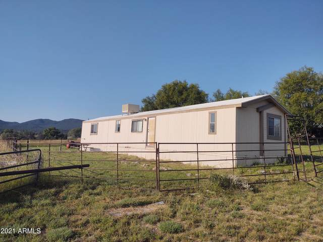 135 E Hubbard Lane, Young, AZ 85554 (MLS #6296490) :: The Riddle Group