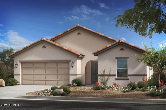 17490 W Molly Lane, Surprise, AZ 85387 (MLS #6296506) :: Selling AZ Homes Team
