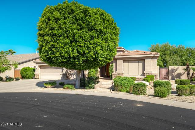 1022 W Thompson Way, Chandler, AZ 85286 (MLS #6296511) :: The Riddle Group