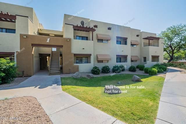 3434 E Baseline Road #102, Phoenix, AZ 85042 (MLS #6296516) :: Yost Realty Group at RE/MAX Casa Grande