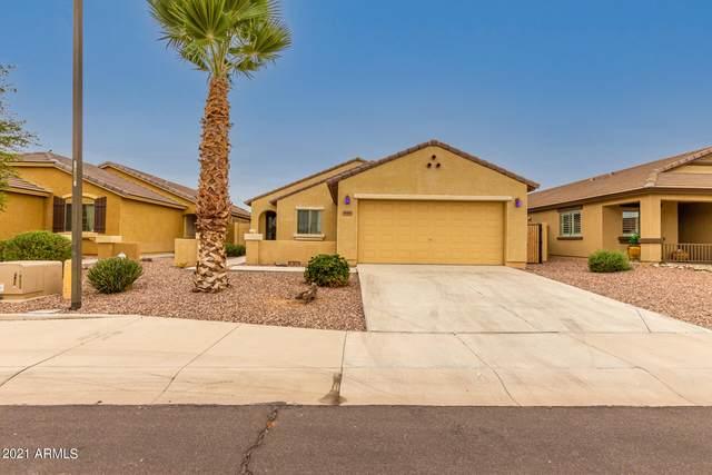 18505 W Bridger Street, Surprise, AZ 85388 (MLS #6296519) :: Elite Home Advisors