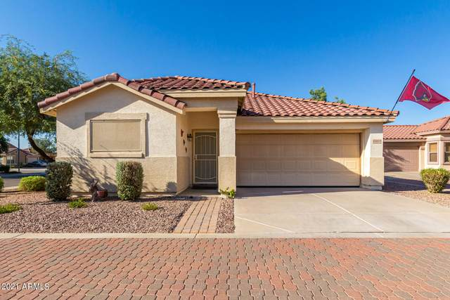 6869 S Halsted Drive, Chandler, AZ 85249 (MLS #6296602) :: The Everest Team at eXp Realty