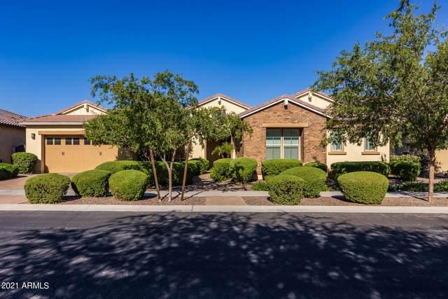 5010 S Centric Way, Mesa, AZ 85212 (MLS #6296623) :: Zolin Group
