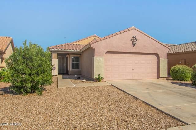17453 N Avelino Drive, Maricopa, AZ 85138 (MLS #6296637) :: Devor Real Estate Associates