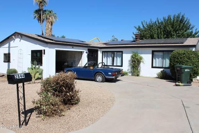 2844 E Piute Avenue, Phoenix, AZ 85050 (MLS #6296644) :: The Newman Team