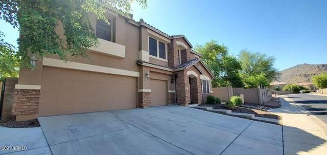 8813 S 13TH Place, Phoenix, AZ 85042 (MLS #6296652) :: Elite Home Advisors