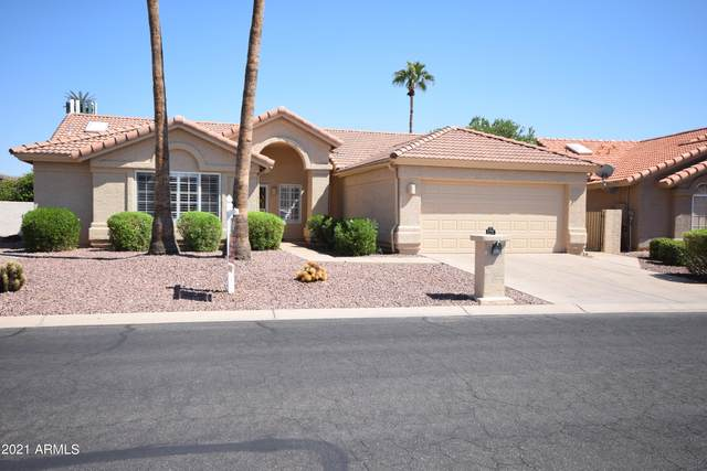 25805 S Flame Tree Drive, Sun Lakes, AZ 85248 (MLS #6296666) :: Executive Realty Advisors
