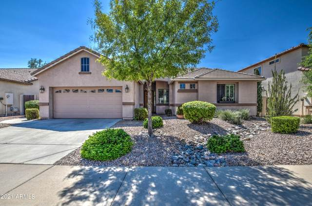 10317 W Edgemont Drive, Avondale, AZ 85392 (MLS #6296677) :: Elite Home Advisors