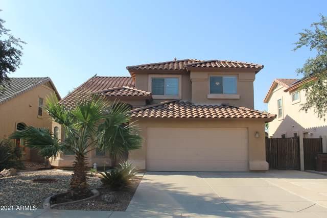 55 W Brahman Boulevard, San Tan Valley, AZ 85143 (MLS #6296680) :: The Ellens Team