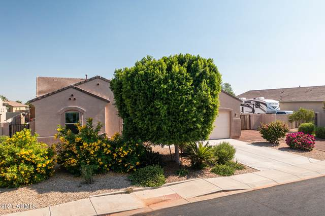 18405 W Denton Avenue, Litchfield Park, AZ 85340 (MLS #6296684) :: Zolin Group