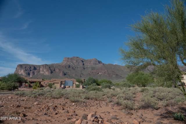 7007 E Grand View Lane, Apache Junction, AZ 85119 (MLS #6296687) :: Devor Real Estate Associates
