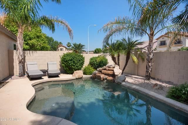 965 W Hackberry Court, Chandler, AZ 85248 (MLS #6296714) :: My Home Group