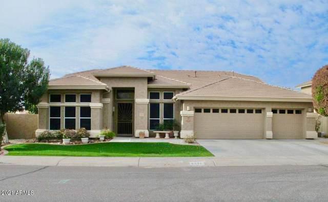 6521 W Hill Lane, Glendale, AZ 85310 (MLS #6296747) :: My Home Group
