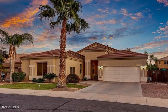 3457 E Kingbird Place, Chandler, AZ 85286 (MLS #6296793) :: Balboa Realty