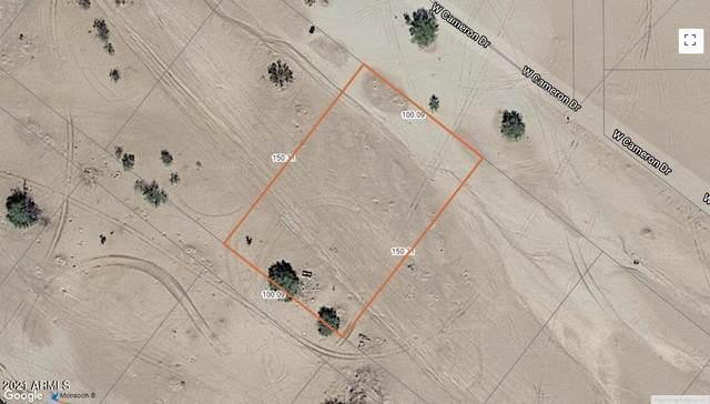 3235 W Cameron Drive, Eloy, AZ 85131 (MLS #6296841) :: Yost Realty Group at RE/MAX Casa Grande