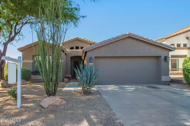 4830 E Morning Vista Lane, Cave Creek, AZ 85331 (MLS #6296856) :: The Copa Team | The Maricopa Real Estate Company