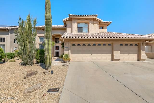 6126 W Park View Lane, Glendale, AZ 85310 (MLS #6296863) :: The Riddle Group