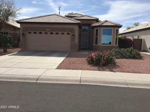 19880 N 110TH Lane, Sun City, AZ 85373 (MLS #6296866) :: The Copa Team | The Maricopa Real Estate Company