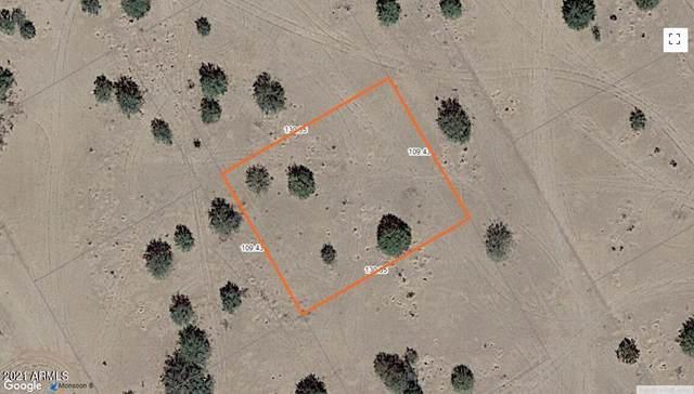 4600 N Del Monte Drive, Eloy, AZ 85131 (MLS #6296886) :: Balboa Realty