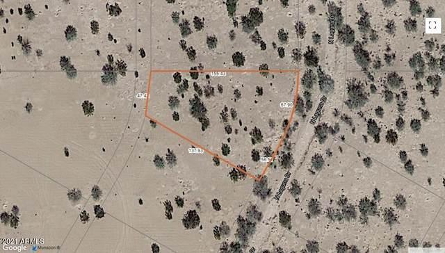 5420 N Laguna Drive, Eloy, AZ 85131 (MLS #6296915) :: Balboa Realty